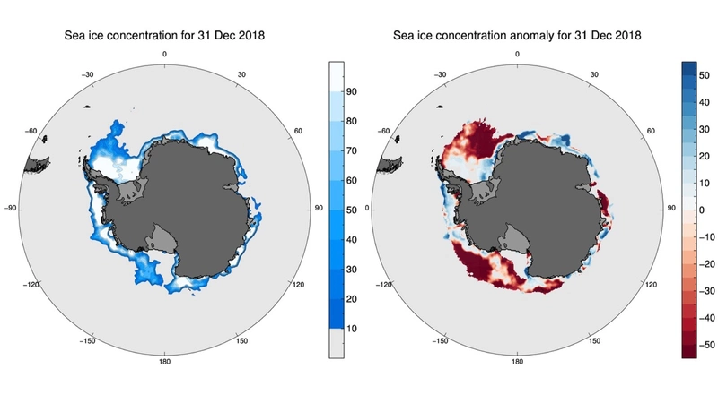 Figure 4: Concentration and anomaly maps for December 31, 2018. Credit: Sea ice concentration data from NSIDC. Figure courtesy of Phil Reid, Australian Bureau of Meteorology