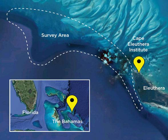 Map location of the Cape Eleuthera Institute and survey area (Image: OceanGate Expeditions)