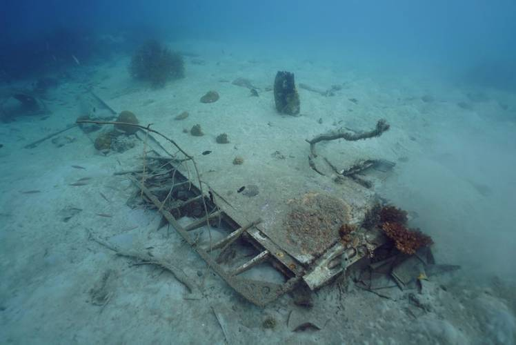 Newly discovered B-25 Bomber (Photo: Project Recover)