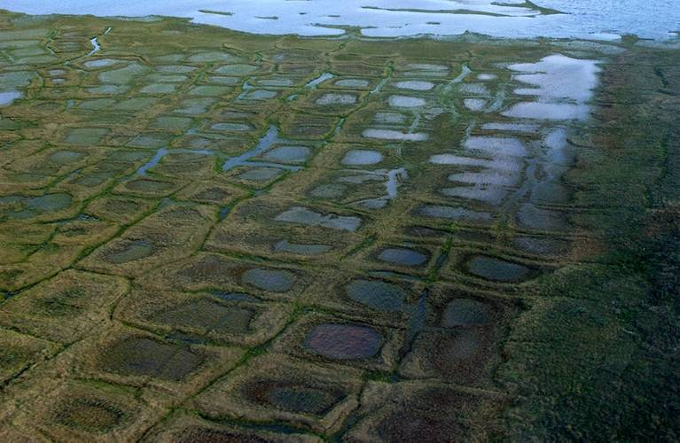 Permafrost forms a grid-like pattern in the National Petroleum Reserve-Alaska, a 22.8 million acre region managed by the Bureau of Land Management on Alaska's North Slope. USGS has periodically assessed oil and gas resource potential there. (Credit: David Houseknecht, USGS.)