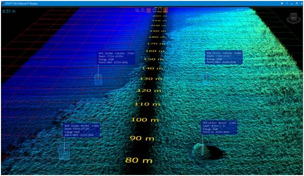 Ping DSP 3D Sidescan Data File Showing Seagrass Bed (Image: BioSonics)