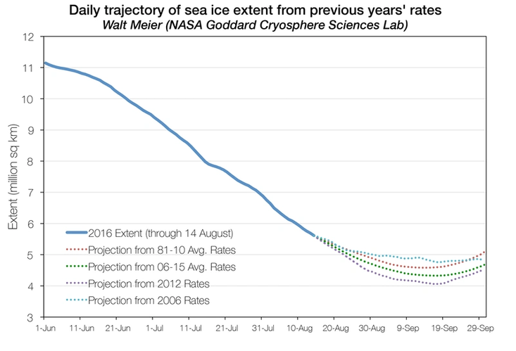 Projections of ice extent from August 14 through September 30 based on previous years' observed retreat rates appended to the August 14, 2016 ice extent. (Credit: W. Meier/NASA GSFC)
