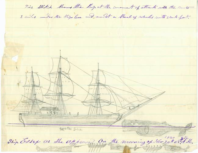 A sketch by Thomas Nickerson depicting the attack and sinking of the ship Essex. (Credit: Nantucket Historical Association)