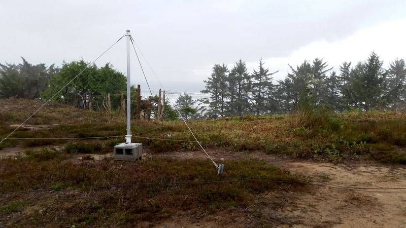One of twelve 2m-tall receive antennas (Photo: ASL Environmental Sciences)