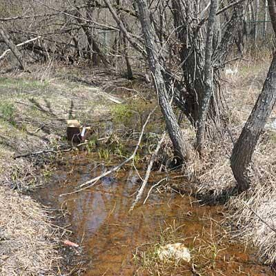 View upstream before Partridge Creek Phase One restoration (Photo: EPA)