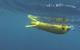 Slocum glider with 200 kHz AZFP echosounder under test (Photo: ASL Environmental Sciences)